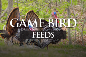 Game Bird Feeds